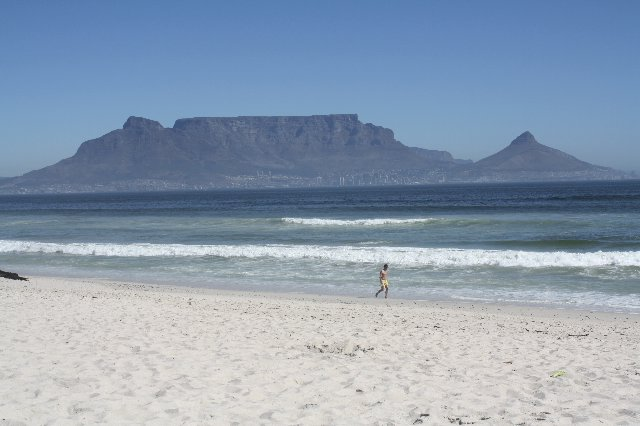 Dolphin Beach - Cape Town